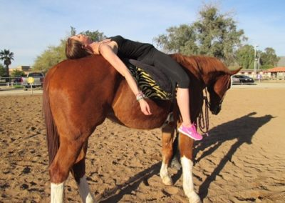 AARC equine therapy